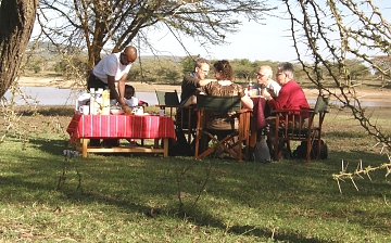 Bush Breakfast in Serengeti