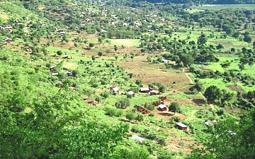 The Usambara Mountains, Lushoto