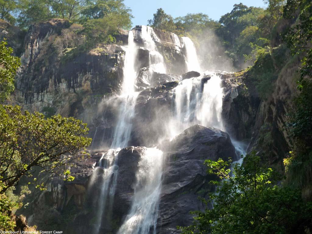 Udzungwa Mountain National Park Gofan Safaris And Travel